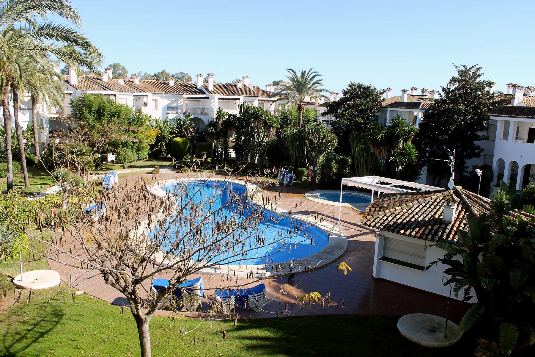 Holiday apartments Estepona Shared pool